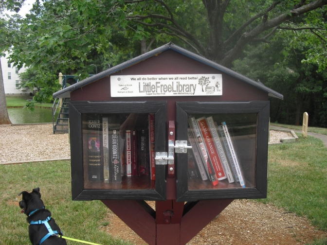 Little Free Libraries: One Book and One Community at a Time