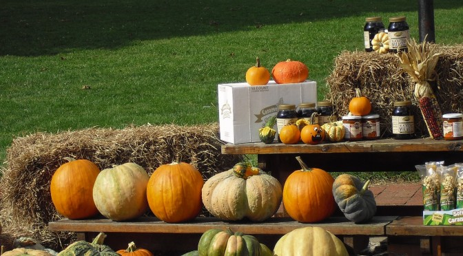 Pumpkins Everywhere in Oatmeal, Smoothies, and …?